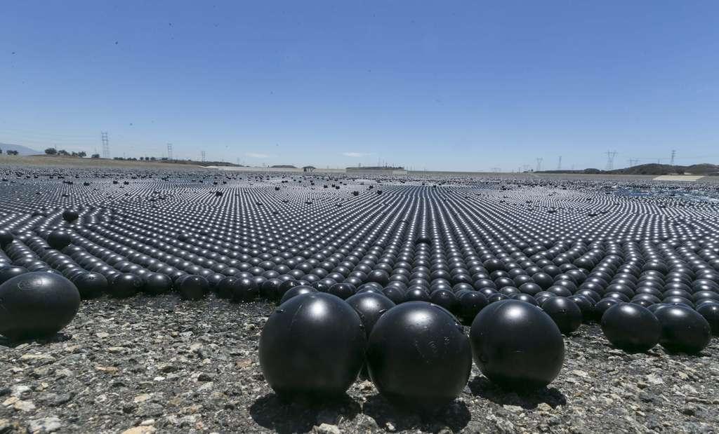 Reservoir Shade Balls