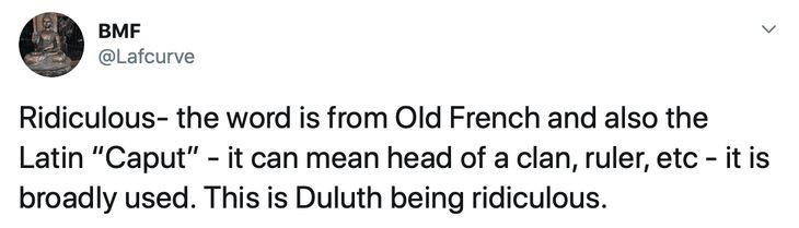 Duluth Language Police