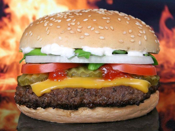 Florida Man Calls Cops Over Mayo on Burger