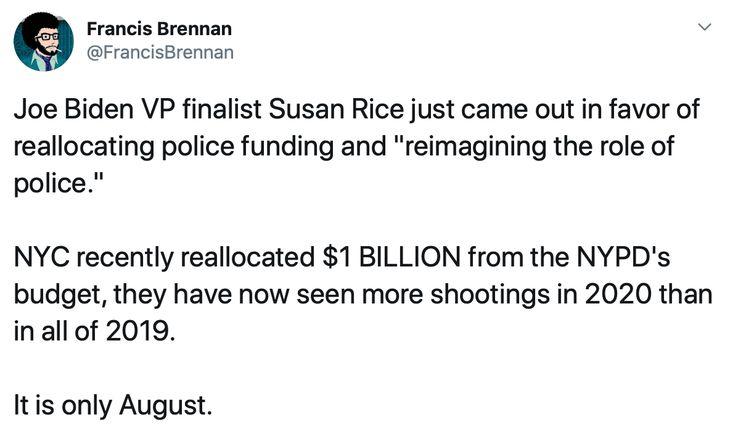 Democrats Defund the Police