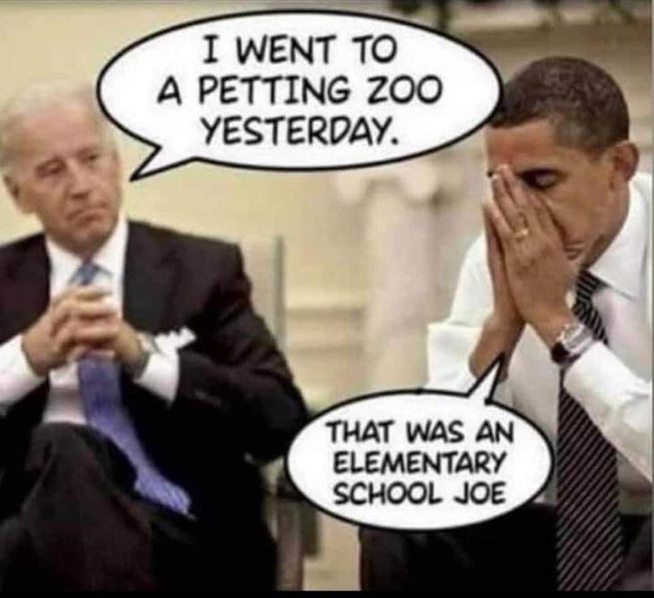 Insanity Wrap Presents Joe Biden's Cognitive Decline