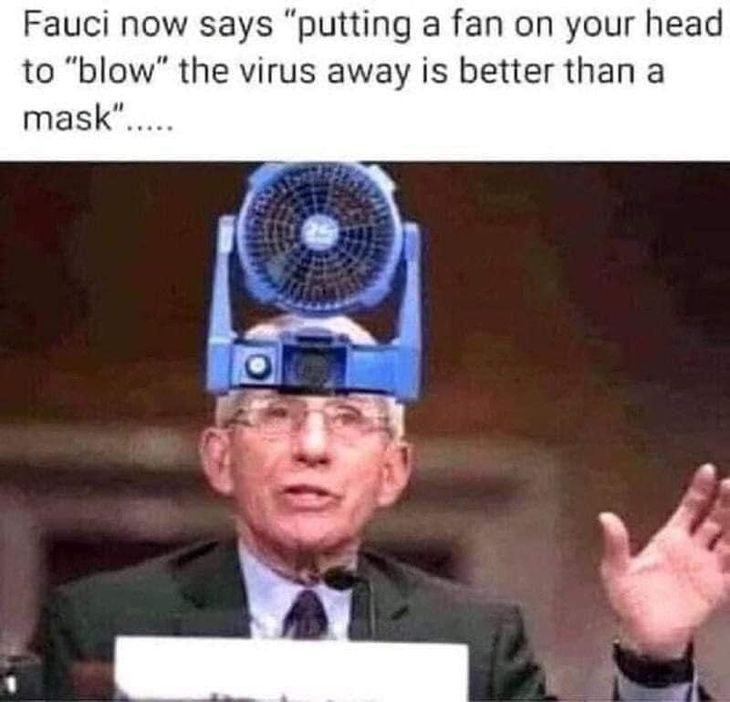 Fauci Fan Head