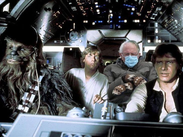 Bernie Mittens Star Wars
