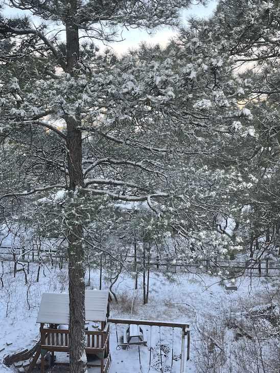 Colorado's Four Seasons