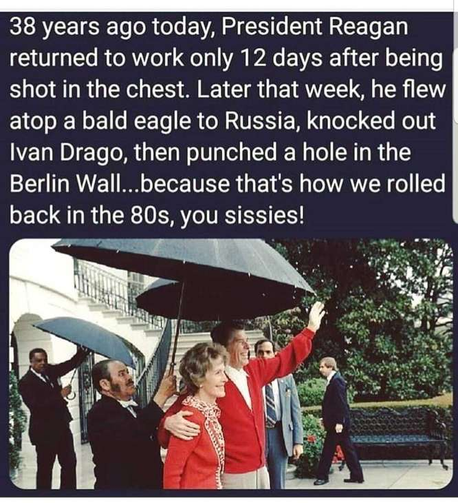 Reagan Owned the '80s
