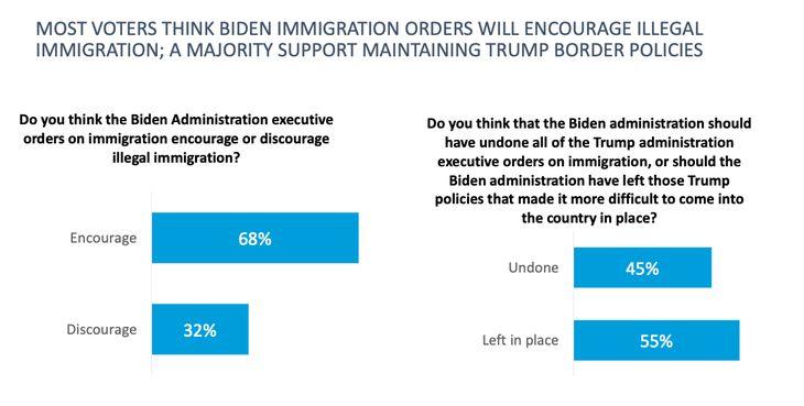 Harvard Border Crisis Biden